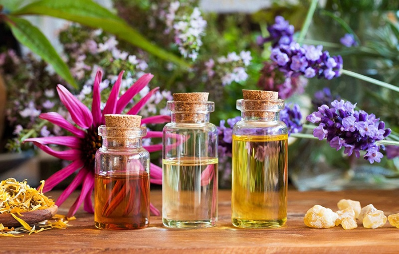 محصولات طبیعی، ارگانیک و سبز
